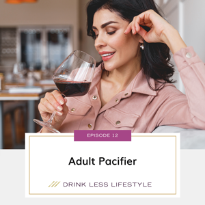 Adult Pacifier